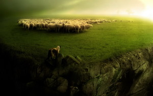 The Good Shepherd and Sheep Dog: The Difference Between Management and Leadership